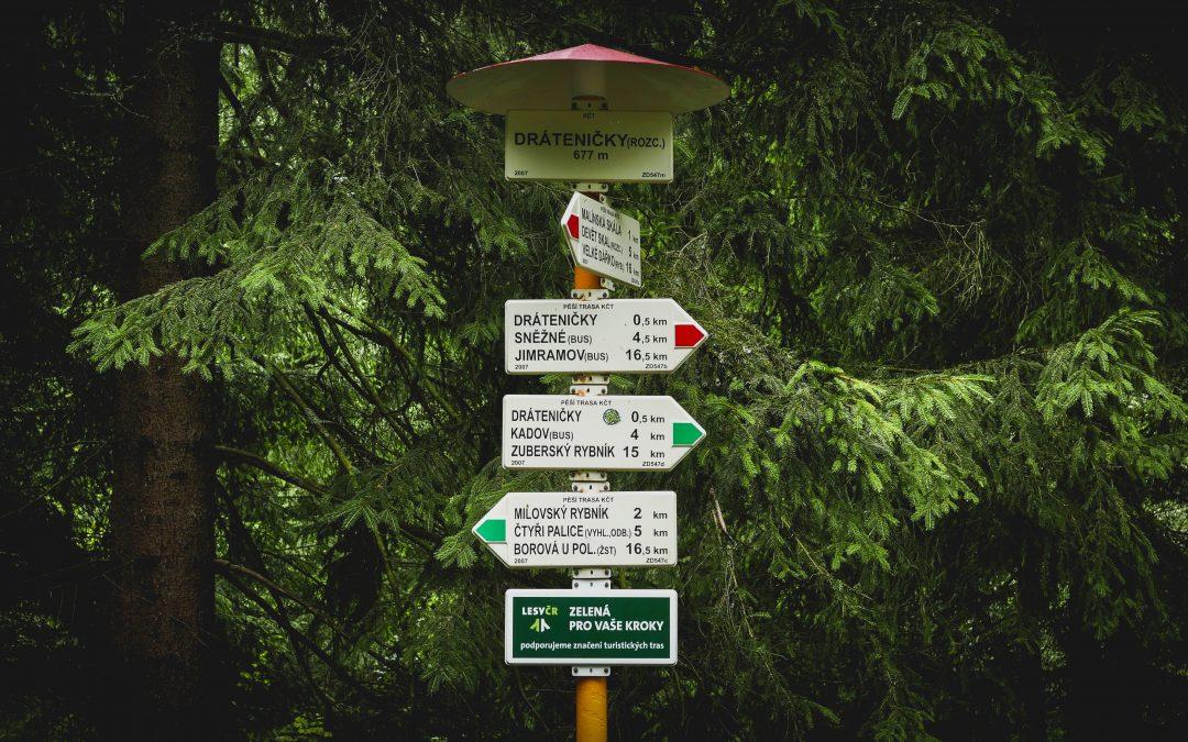 Exit Planning: Decision